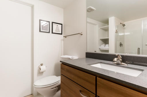 image 8 furnished 2 bedroom Apartment for rent in McLean, DC Metro