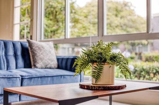 image 4 furnished 3 bedroom Apartment for rent in Parkmerced, San Francisco